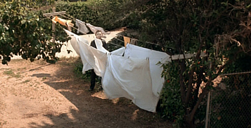halloween 1978 michael myers stalking laundry