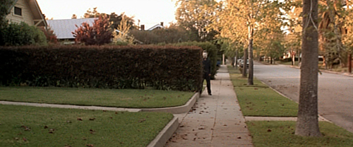halloween 1978 michael myers behind hedge